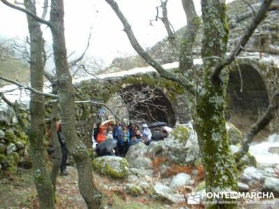 Puente Nuevo - Valle Jerte - Carlos V; caminatas por madrid